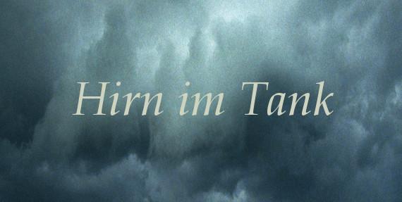 Hirn im Tank - Ulrike Draesner #7terSprung