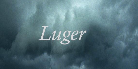 Luger -Ulrike Draesner #7terSprung