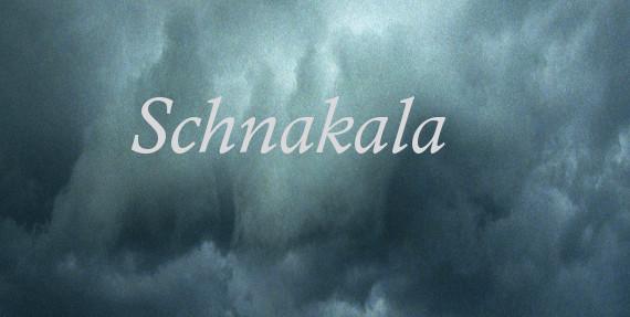 Schnakala-Ulrike Draesner-#7terSprung