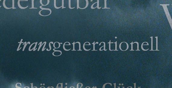 transgenerationell-Ulrike Draesner #7terSprung