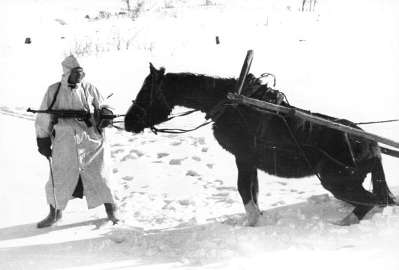 Bundesarchiv_Bild_101I-215-0366-03A,_Russland,_Soldat,_Pferd_im_Winter Panjewagen #7terSprung